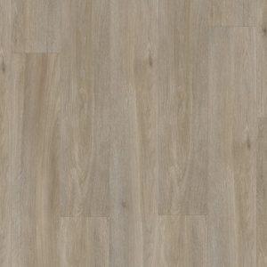 BACP40053 dub hodvábny sivohnedý