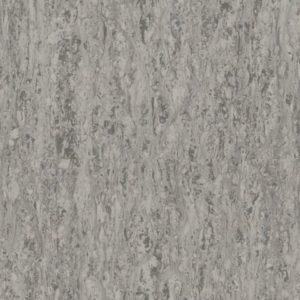 3217260 nature grey